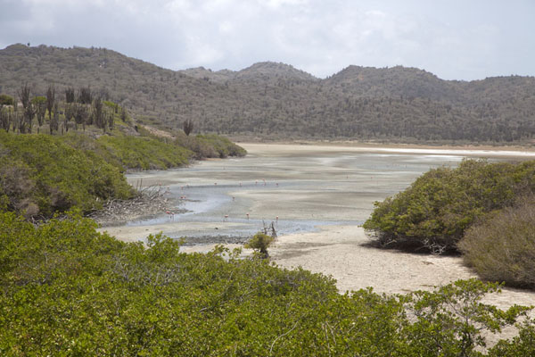 Landscape at Saliña Matijs, near the entrance to the park | Washington Slagbaai National Park | Antilles Néerlandaises