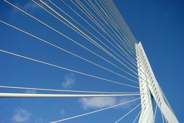 White steel cables holding the bridge together | Erasmus bridge | Netherlands