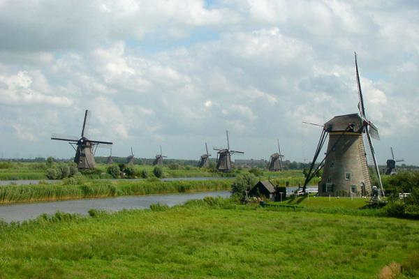 Picture of Several windmills at KinderdijkKinderdijk - Netherlands