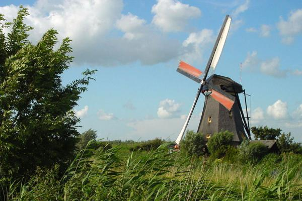 Picture of One of the windmills in actionKinderdijk - Netherlands