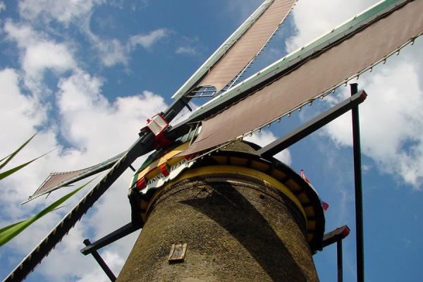 Foto di Windmill at Kinderdijk seen from below - Paesi Bassi - Europa