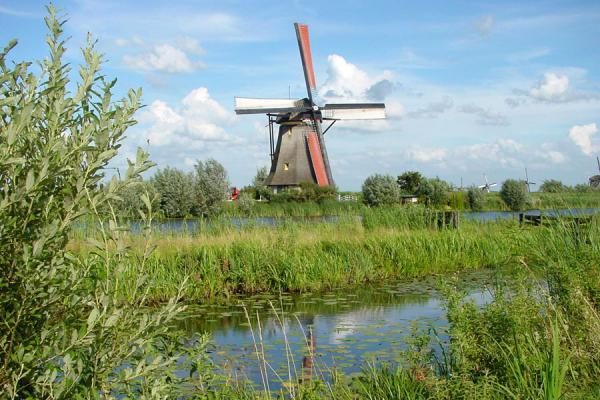 Picture of Kinderdijk: reflection of windmill in the water