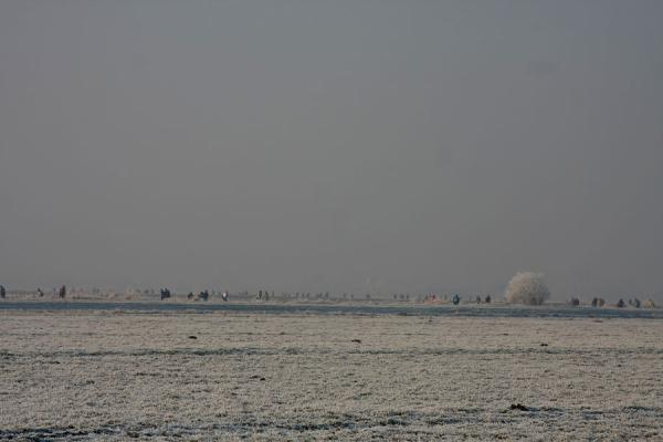 Picture of Natural Ice pastime (Netherlands): Skaters in a winter landscape