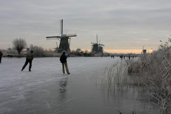 Picture of Natural Ice pastime (Netherlands): Skating near the famous windmills of Kinderdijk