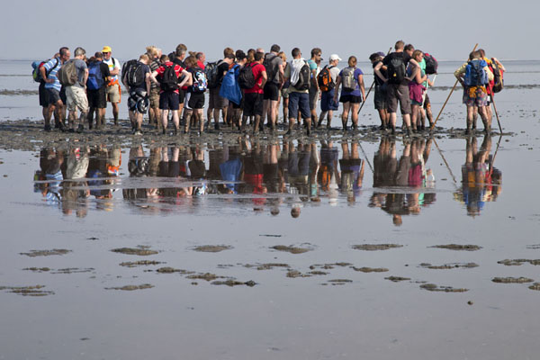 Group of participants taking a break on their way to Ameland | Mudflat hiking Ameland | Netherlands