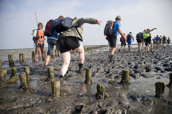 At some parts, you can sink deep into the mud | Mudflat hiking Ameland | Netherlands