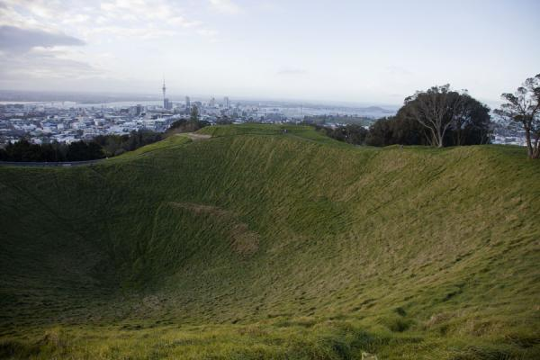 Crater of Mt. Eden with the skyline of Auckland in the background | Terrain volcanique de Auckland | Nouvelle Zélande