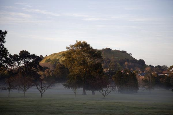 Picture of Auckland Volcanic Field (New Zealand): Morning fog under the trees with Mt. Victoria in the background