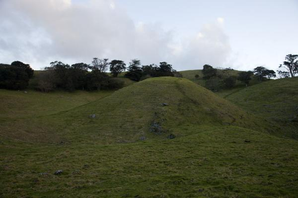 Volcanic dome inside the crater of Mangere Mountain | Auckland Vulkaangebied | Nieuw Zeeland