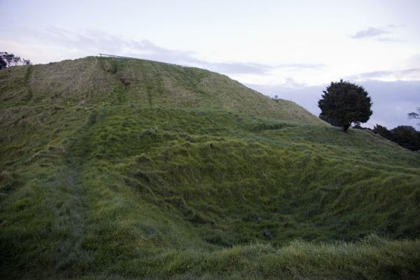 Picture of Auckland Volcanic Field (New Zealand): Kumara storage pit carved out of the Mangere Mountain