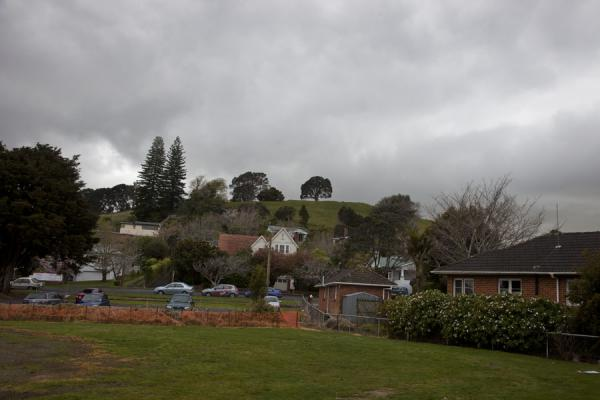 Mount Hobson surrounded by houses | Area volcanica di Auckland | Nuova Zelanda
