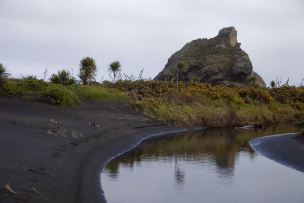 Foto di Cutter Rock reflected in a small brook running towards the beachWaitakere Ranges Regional Park - Nuova Zelanda