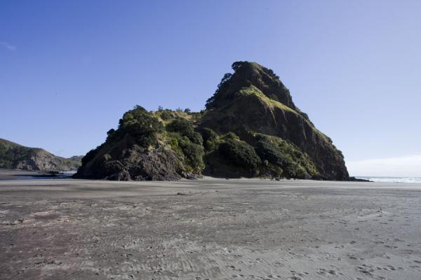 Picture of Waitakere Ranges Regional Park (New Zealand): Low tide leaves Lion Rock exposed on Piha beach