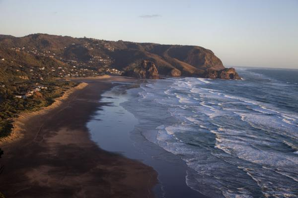 的照片 Piha Beach seen from a high vantage point on the north - 纽西兰