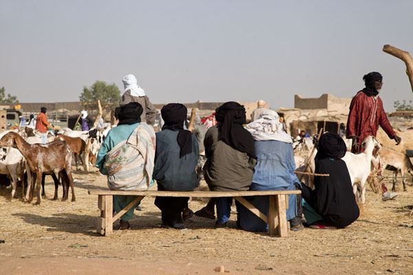 Tuareg men sitting on a bench at the cattle market of Agadez | Mercado de ganado de Agadez | Niger