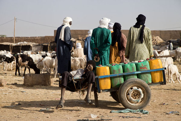 Tuareg men at the cattle market of Agadez | Mercado de ganado de Agadez | Niger
