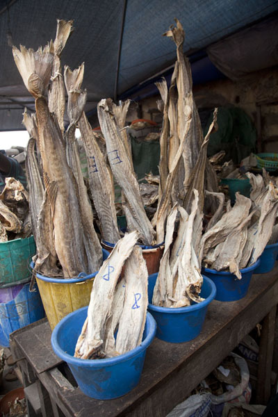 Dried fish waiting to be sold at Oyingbo market | Marché de Oyingbo | Nigeria