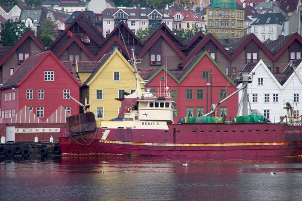 Picture of Bryggen (Norway): Bryggen: Bergen's most famous waterfront