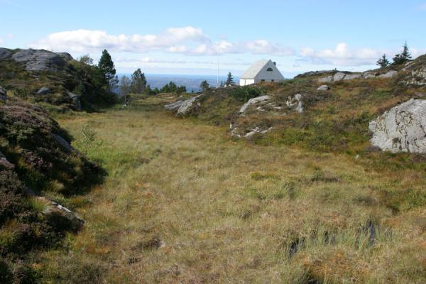 Typical vegetation and small house in the Fløyen area | Mount Fløyen hiking | Norway