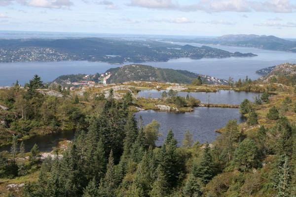 Picture of Fjord, lakes, forest and the sea in the background