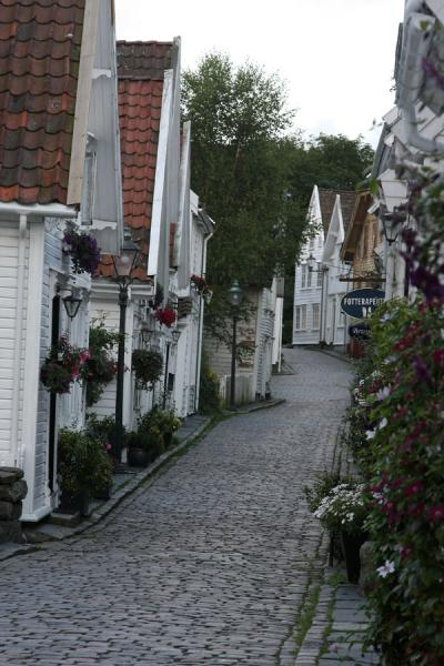 Picture of Old Stavanger (Norway): Typical alley in Old Stavanger