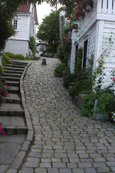 Picture of Old Stavanger (Norway): Flowers and cobble-stones in Old Stavanger