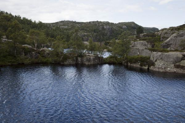 Small lakes with trees and rocks on the way up to Preikestolen | Preikestolen (Roca púlpito) | Noruega