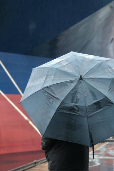 Umbrellas are a common sight in Bergen | Rainy Bergen | Norway