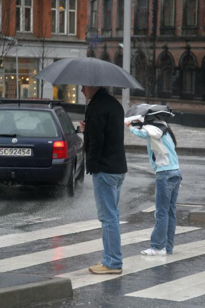 Always careful not to get even more wet from passing cars | Rainy Bergen | Norway