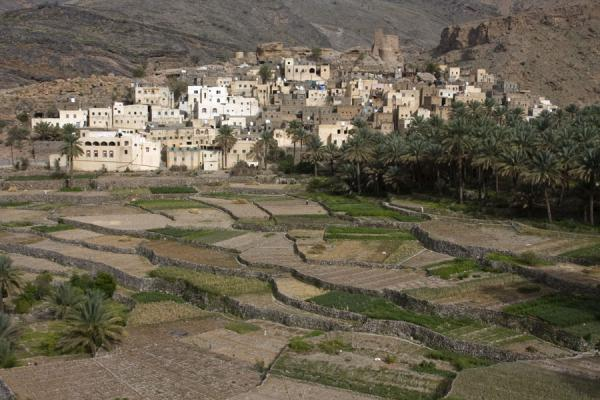 Frontal view of Bilad Sayt from a distance | Bilad Sayt | Oman