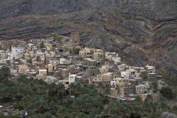 阿曼 (View of the village of Bilad Sayt with date palm trees and rocky backdrop)