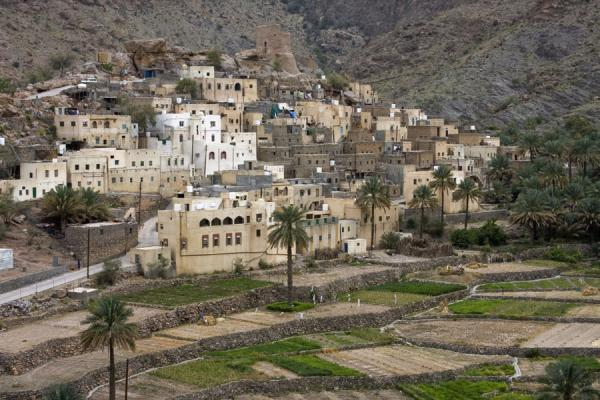 Picture of Bilad Sayt (Oman): Houses on a hill with terraces: Bilad Sayt