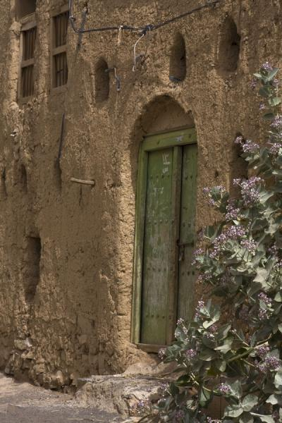 Wooden door with flowers in adobe house in Al Hamra | Hamra Old Town | Oman