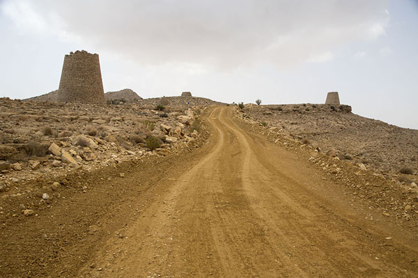 Picture of Jaylah beehive tombs (Oman): Track through the barren landscape with beehive tombs on both sides