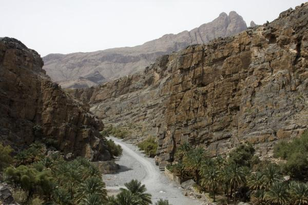 Near the entrance to Wadi Nakhr | Jebel Shams Grand Canyon | Oman