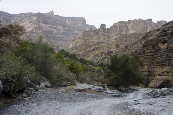 Road through Wadi Nakhr, the bed of the Grand Canyon | Jebel Shams Grand Canyon | Oman