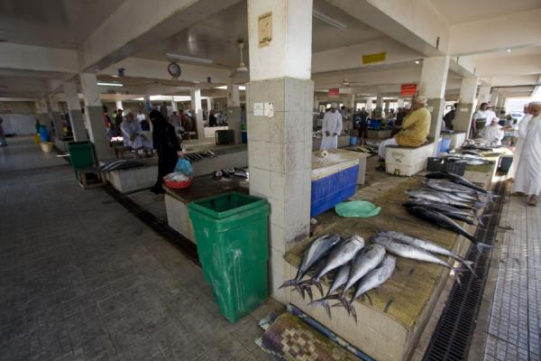 Overview of the fishmarket of Mutrah | Mutrah Fish Suq | Oman