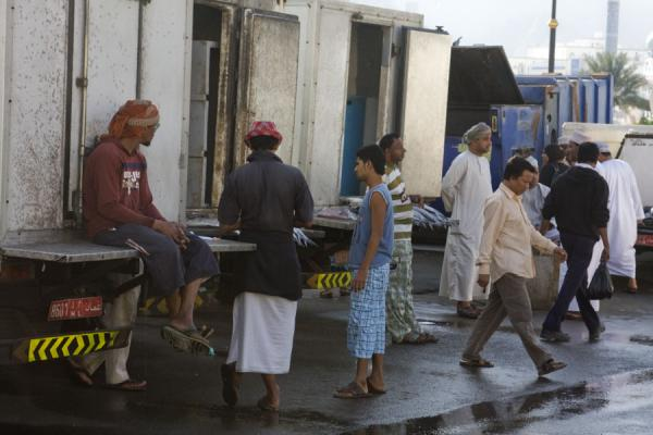 Loading fish into trucks near the market | Mutrah Fish Suq | Oman