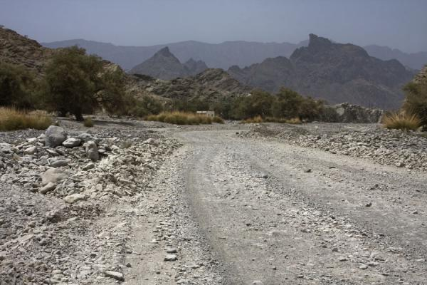 Gravel road in the lower parts of Wadi Bani Awf | Wadi Bani Awf | Oman