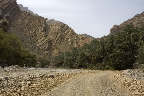 Picture of Palm trees and rocks at the entrance of Wadi Bani Awf