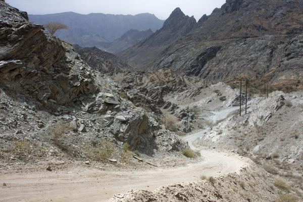 Picture of Gravel track leading through the lower parts of Wadi Bani Awf
