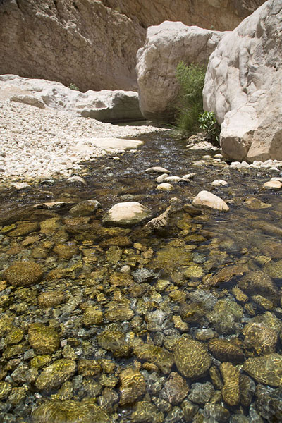 Foto van Water running down the wadi over small rocksWadi Bani Khalid - Oman