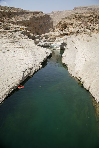 Foto di Green water in a lower section of the wadi - Oman - Asia
