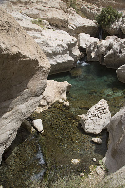 Foto van Tiny waterfalls in the wadiWadi Bani Khalid - Oman