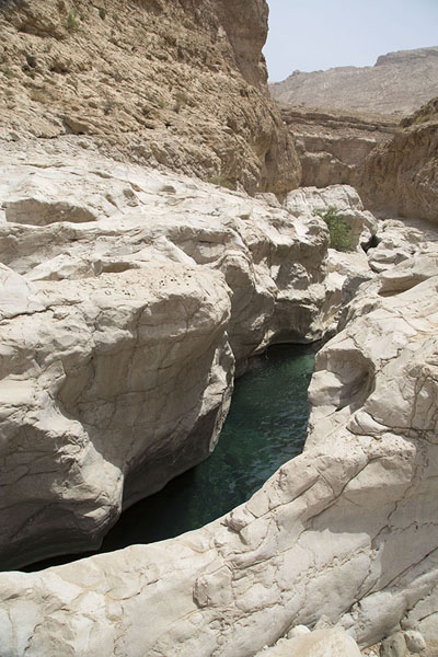 Foto van Rocky walls containing green-blue waterWadi Bani Khalid - Oman