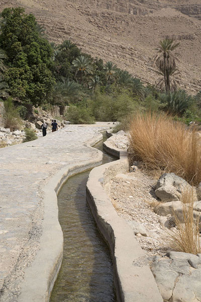 Foto di Falaj channeling water from the wadi to a nearby village - Oman - Asia
