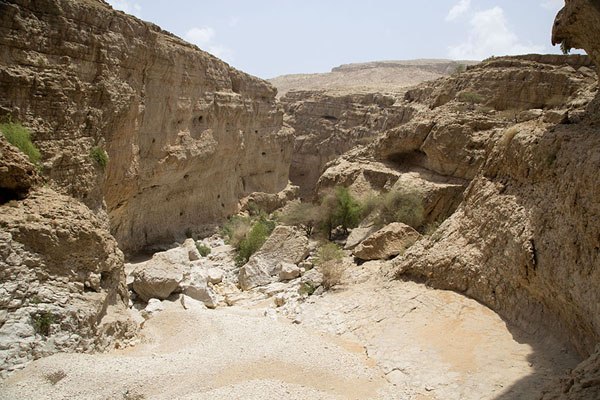 Foto van Overview of the higher part of the wadiWadi Bani Khalid - Oman