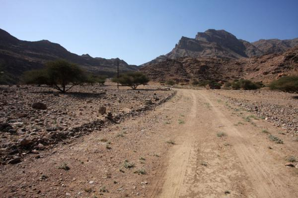 Picture of Mountains and road in Wadi Mayh