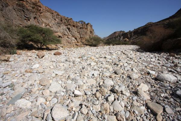 Stony riverbed in Wadi Mayh | Wadi Mayh | Oman