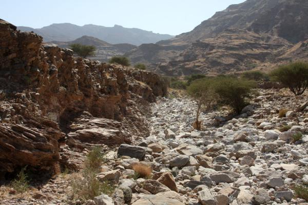 Stones, rocks and trees with cliffs in a side valley of Wadi Mayh | Wadi Mayh | Oman